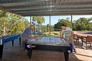 Playing some air hockey. Unlimited play, no need for coins!