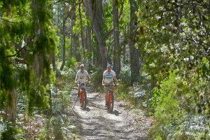Mountain biking is one of the activities you can do at the Lodge