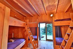 Bedroom bunks