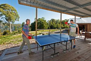 Table tennis in the games area