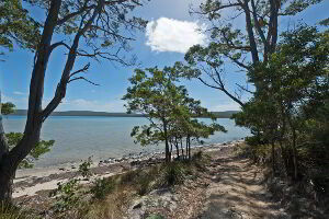 The path from Cloudy Bay Lagoon Estate to the lagoon is great for walking and exploring with children