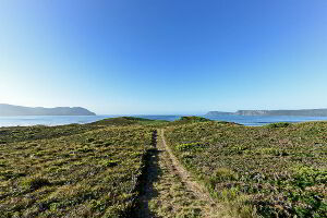 A private walking track in the middle of Cloudy Bay meanders over undulating dunes in front of the Cloudy Bay Villa