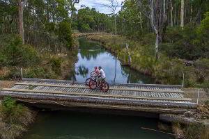 Bike riding across the Saintys Creek Bridge just near the cottage