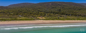 View of Cloudy Bay Cabin holiday accommodation with the surrounding South Bruny National Park