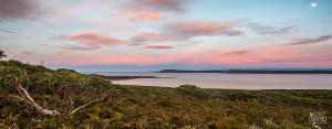 Looking south over the coastal scrub towards Cloudy Corner at the East end of Cloudy Bay Tasmania
