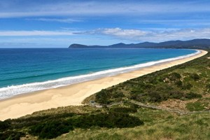 Wide view of pristine beach at Bruny Island's famous Neck game reserve. Home to little penguins and short tailed shearwaters.