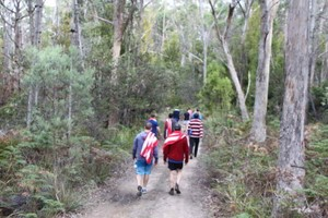 A corporate group hiking in the bush is a popular activity to get to private beaches.