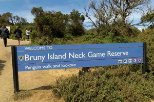 Welcome to Bruny Island Neck Game Reserve
