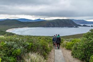 Walking down the stairs at Cape Bruny
